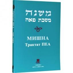 Мишна. Трактат Пеа